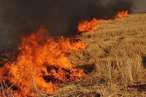 Sandallar'daki yangında balyalar yandı