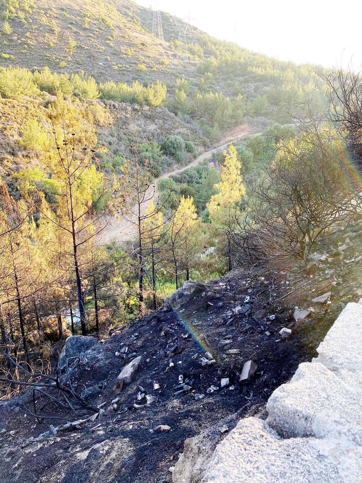 Çatalköy'deki yangın korkuttu