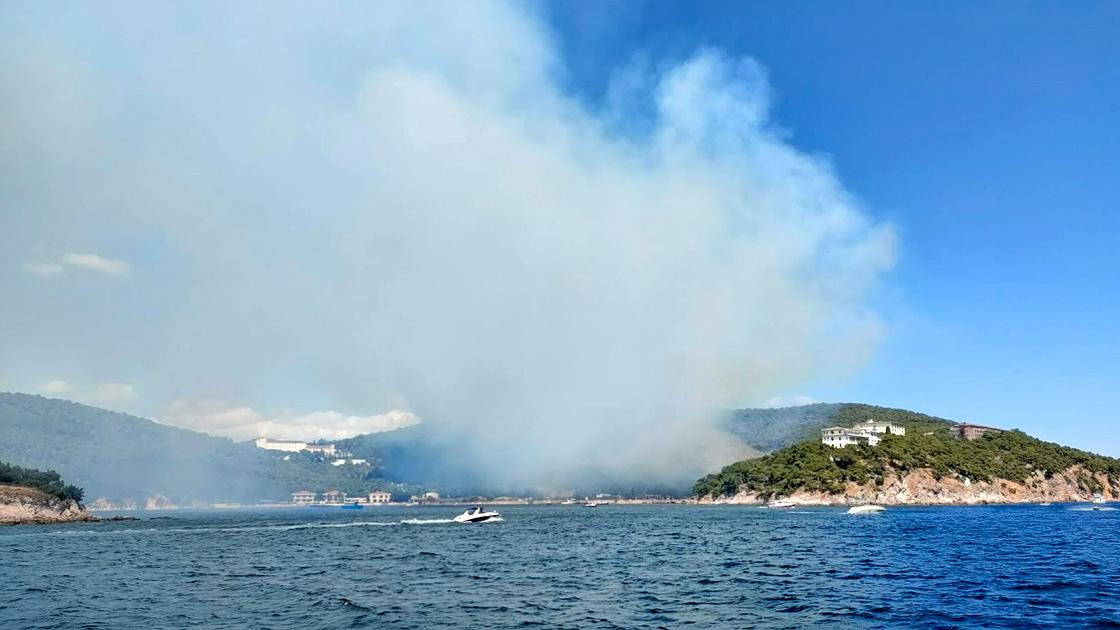Heybeliada'daki yangın kontrol altında